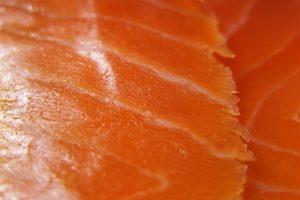 Salmon water