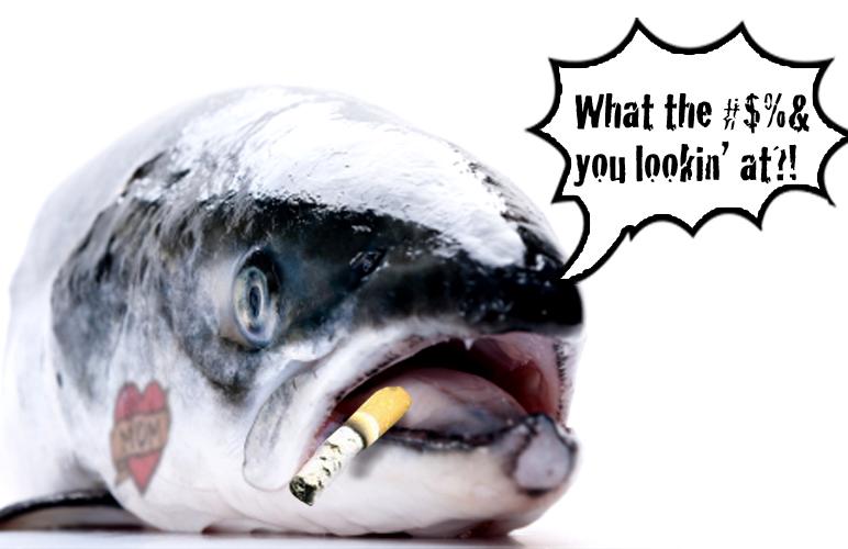 Eat me!I'm GMOZ Salmon and the FDA said I'm good.Monsatan's in the News I'll Bite.