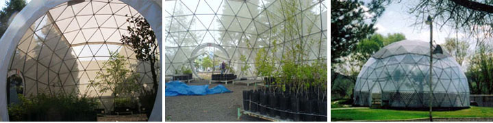 Dome GreenhousesCreate an enviornment