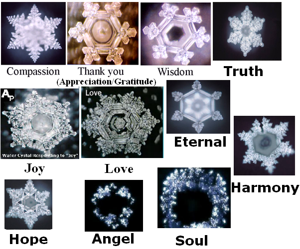 Water Crystals and words