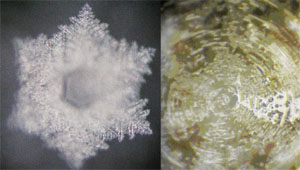 Water Crystals with Music